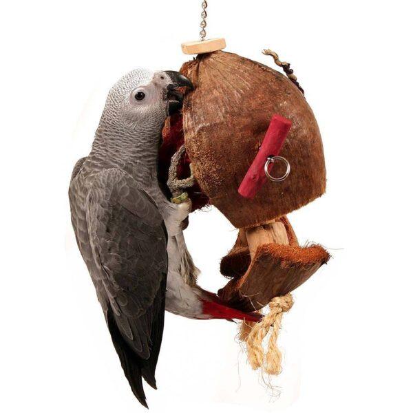 Голяма играчка с естествен кокос – Coco De Nut – 38cm Играчки Големи видове папагали Играчки Всички продукти