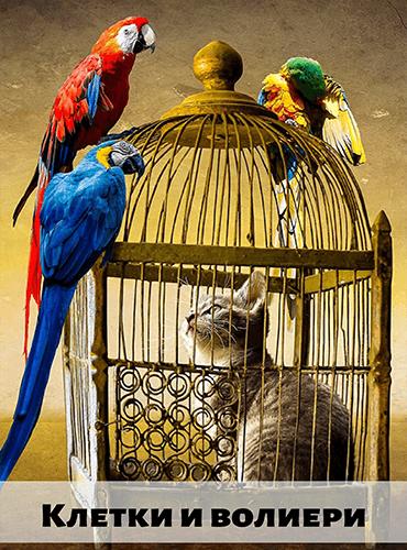 Папагалски Рай