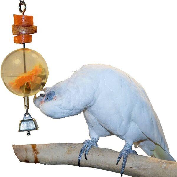 Играчка за папагали-Сфера за храна -Творческа Играчки Големи видове папагали Играчки Средни и Малки папагали Играчки Всички продукти
