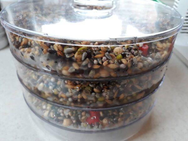 Помощник за Кълновете на папагала Вани и др. Аксесоари Семена за покълване и варива Семена за покълване и варива Насипни храни Оборудване-Аксесоари Всички продукти