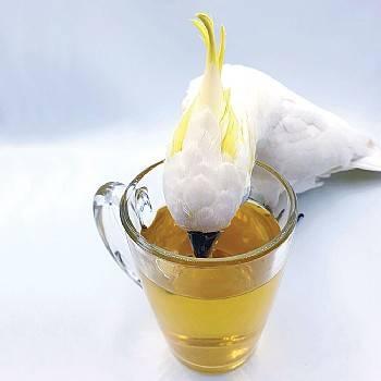 Polly`s -Натурално оперение – Органичен чай за птици-40гр Храни и лакомства Лакомства - Яйчни храни и Други Храни за малки и средни папагали Лакомства и Други Витамини-Минерали и Добавки Подсилване на имунитета Самооскубване и други критични случаи Всички продукти