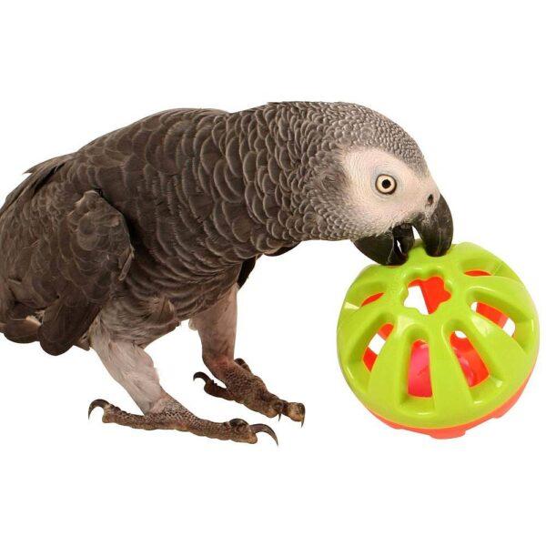 Забавна топка -Средна Играчки Големи видове папагали Играчки Всички продукти