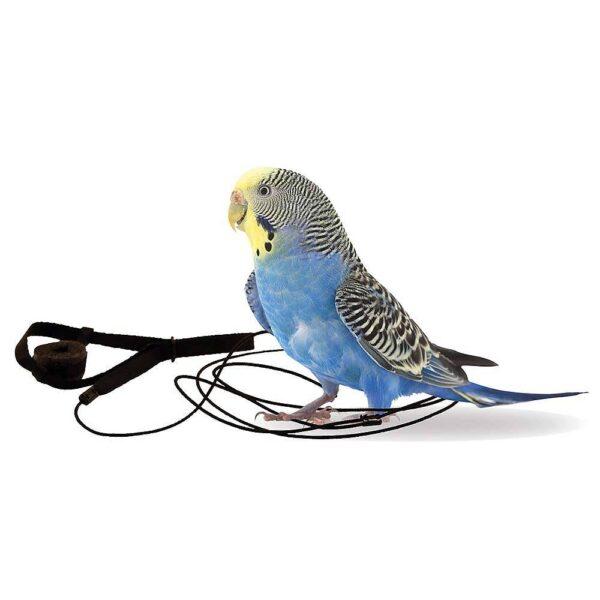 Aviator – Harness – размер – Мини Оборудване-Аксесоари Авиатор- Харнес- Нагръдник Всички продукти