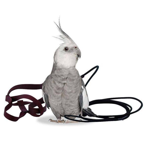 Aviator – Harness – размер Petite Оборудване-Аксесоари Авиатор- Харнес- Нагръдник Всички продукти