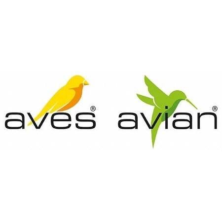 Aves - Avian