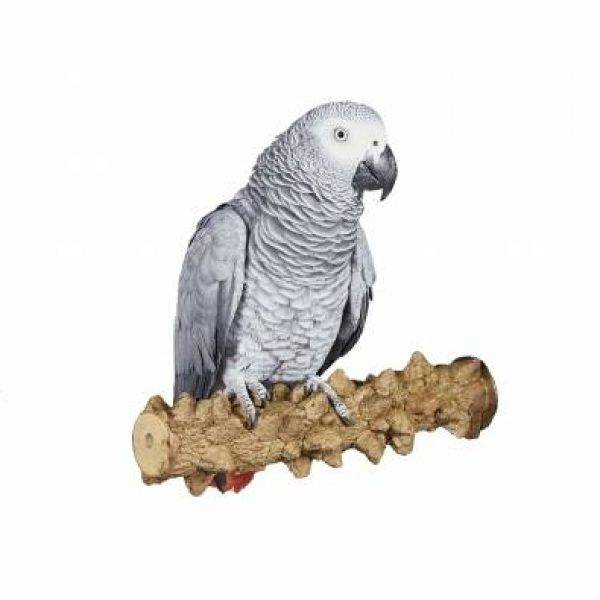 Лична: Кацалки за папагали -PS24 Оборудване-Аксесоари Кацалки Всички продукти