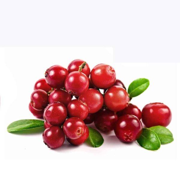 Червени Горски Боровинки сушени – Лакомство за Папагали – 150 гр.