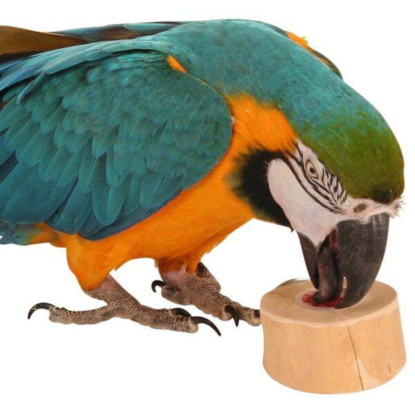 Натурална дървена хранилка- Държач за плодови чашки