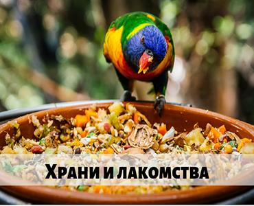 Храна за папагали&# гранули за папагали,гранули за жако, храна за корела , здравословни храни за папагали